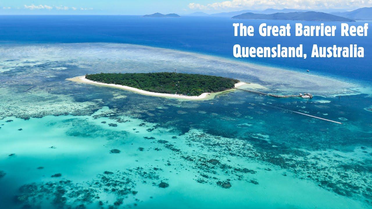 Web mjesto za oaze qld
