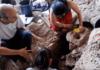 Pivovara stara 13 000 godina