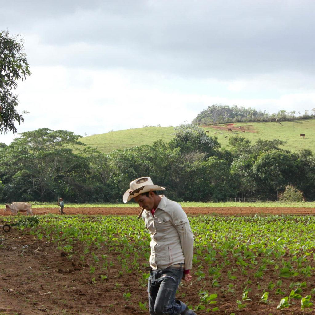 druženje u trinidadu vrtlog izlazaka s Kanadom