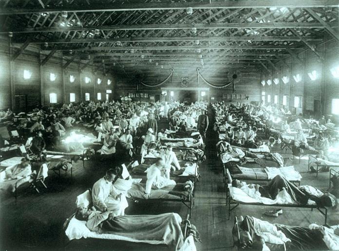 španjolska gripa, virus, epidemija