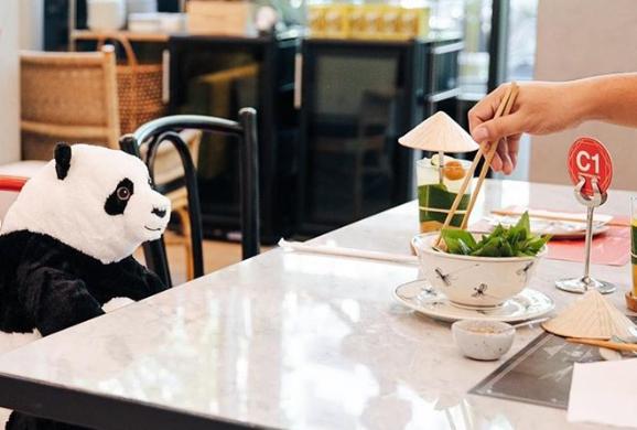 panda, restoran